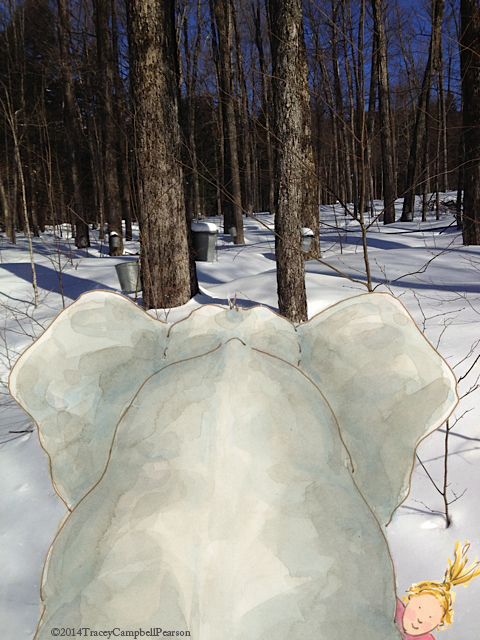 Elephant and Gracie looking Maple Syrup in Vermont woods...